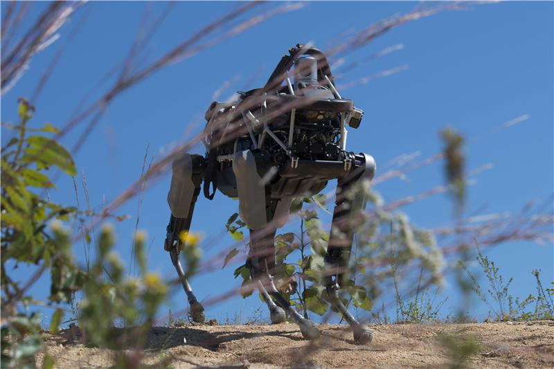 高清:美军新型机器狗出没海军陆战队基地--军事--人民网unlight版