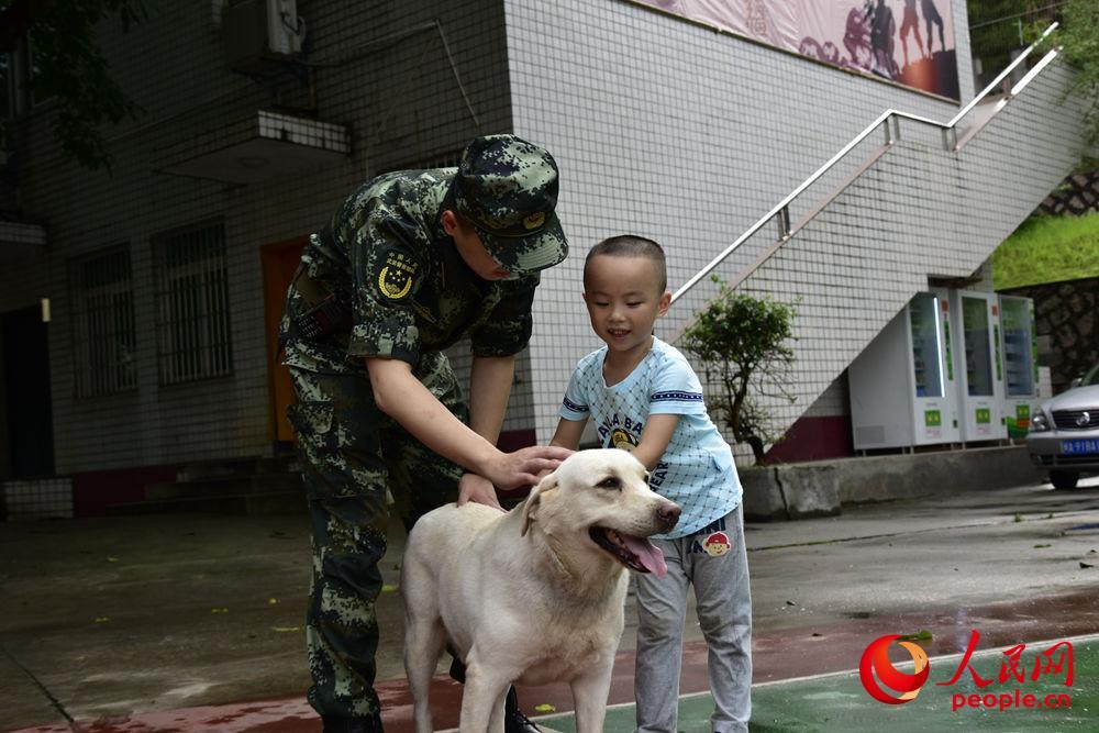 图为孩子与军爸为军犬梳理毛发