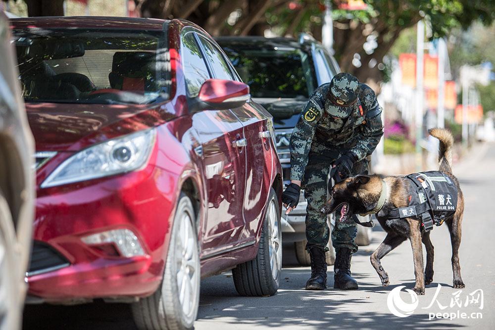 警犬進行車輛搜索訓練。