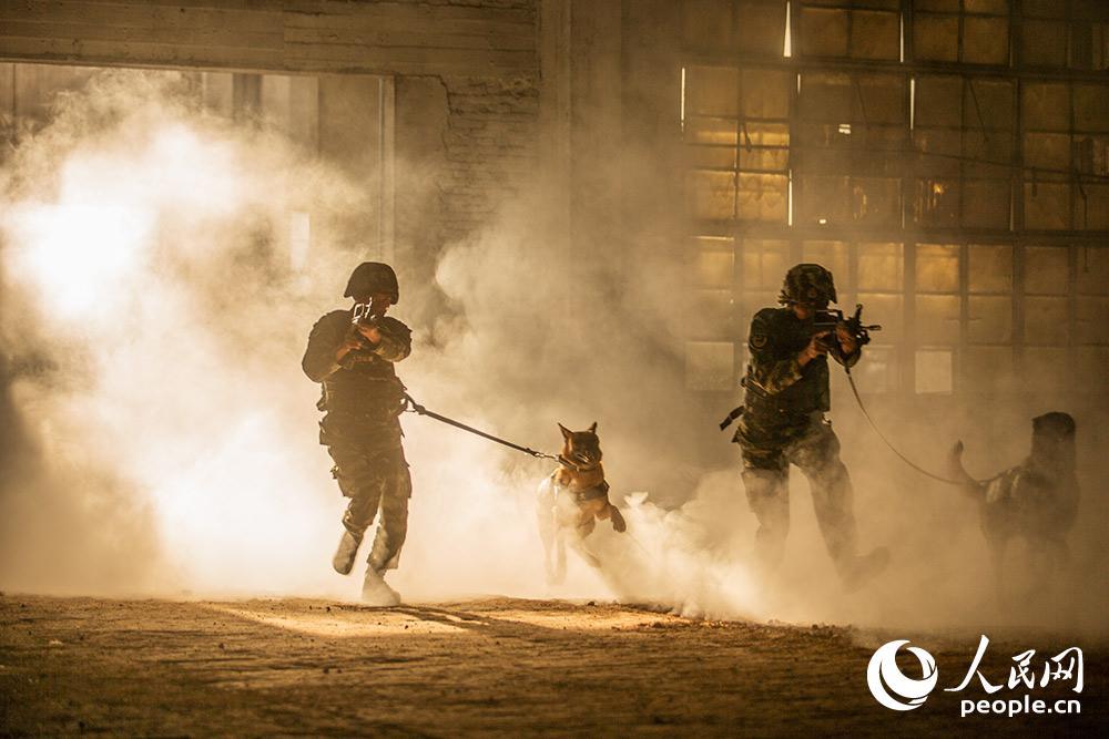 警犬與訓導員進行人犬協同戰術訓練。