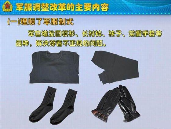 07陆军军装领花-图说军服调整改革的内容 一 理顺了军服制式图片