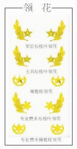 标志服饰 我军07式军服的一道亮丽风景图片