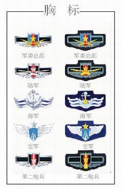标志服饰 我军07式军服的一道亮丽风景 6图片