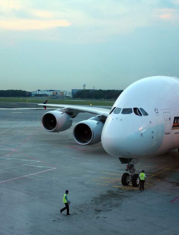 作人员引导下,新加坡航空公司首架A380客机滑行到停机位,顺利到