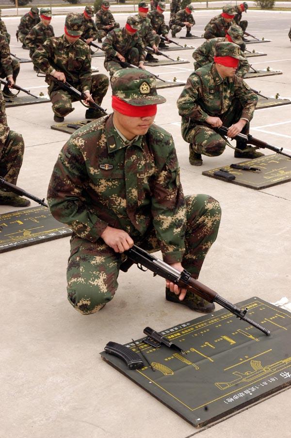 军队正规编制分别为多少? - 博弈聖 - 博 弈 聖