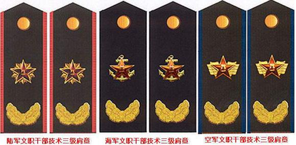中国人民解放军没有 文职将军 这一称呼
